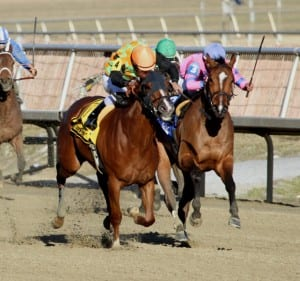 My Wandy's Girl (left) takes the lead in the lane.  Photo by Laurie Asseo.