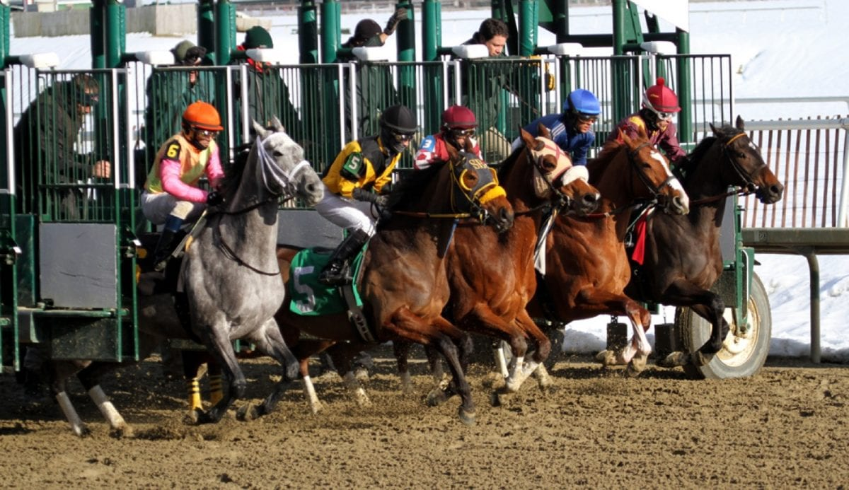 Maryland Racing Commission punts jockey weight issue for another month