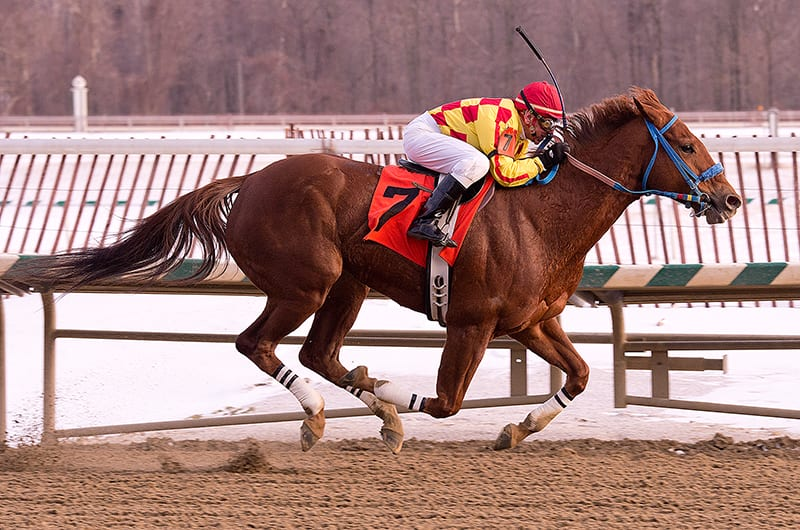 Ten entered in Saturday's Barbara Fritchie Handicap