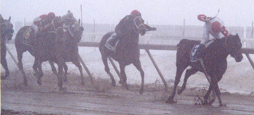 Xtra Heat bursts through the fog to win the 2003  Fritchie.  Photo by Laurie Asseo.