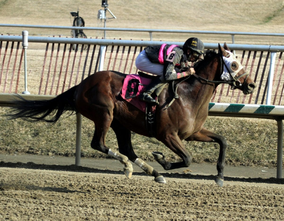 "Fashionably late Kid Cruz providing owner ""greatest gift of all"""