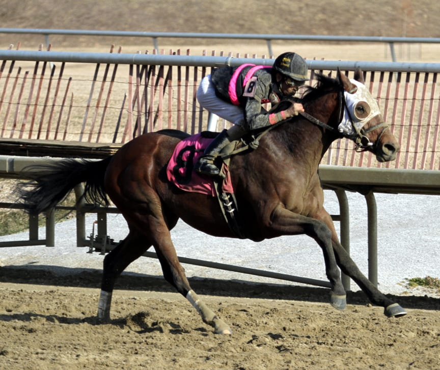 Strong Mandate off Preakness trail