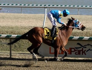 Steady N Love wins the Caesar's Wish.  Photo by Laurie Asseo.