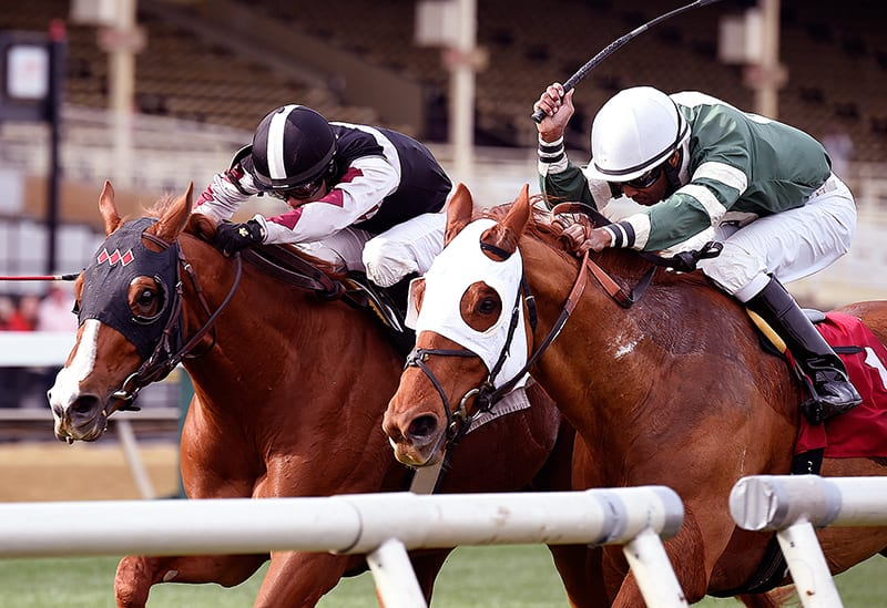 Hamp proves narrowly best in Henry S. Clark Stakes