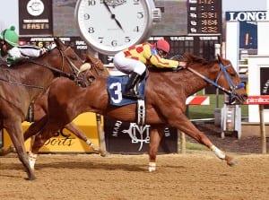 Winning Image takes the Primonetta Stakes.  Photo by Jim McCue, Maryland Jockey Club.