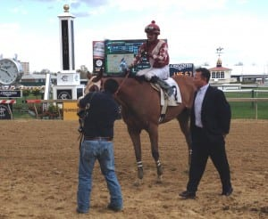 This could get to be a habit.  Chris Grove, in blazer, leads Celtic Katie into the winner's circle after she took Saturday's Geisha Stakes at Pimlico. It was Grove's fifth Geisha win.