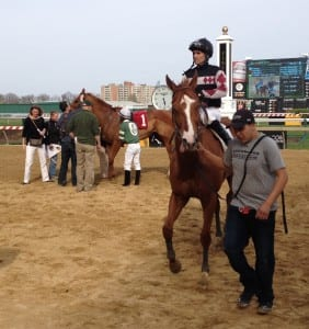 Hamp enters the winner's circle after the Henry S. Clark.  Photo by The Racing Biz.