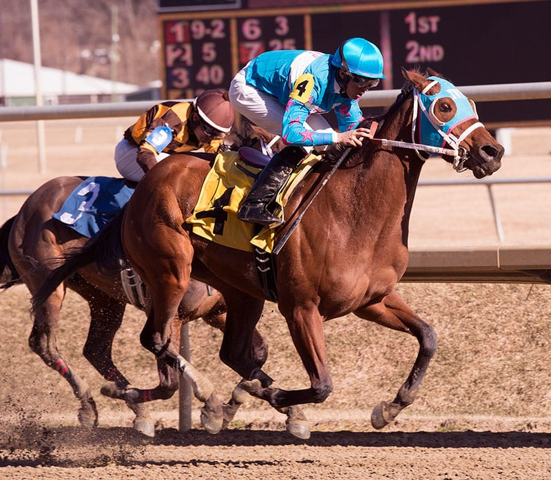 Six Maryland-breds set for Geisha Stakes