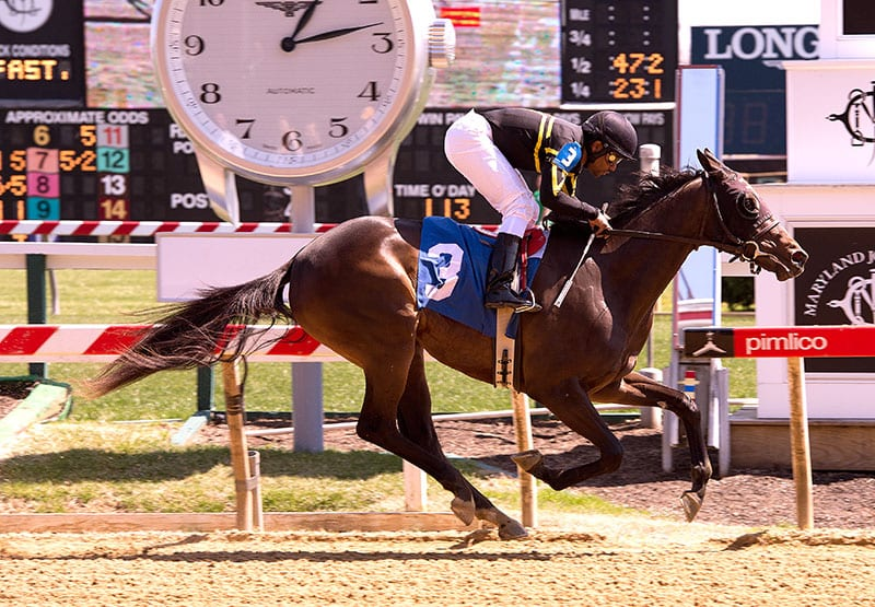 Truth in the Lies wins first Pimlico baby race of '14