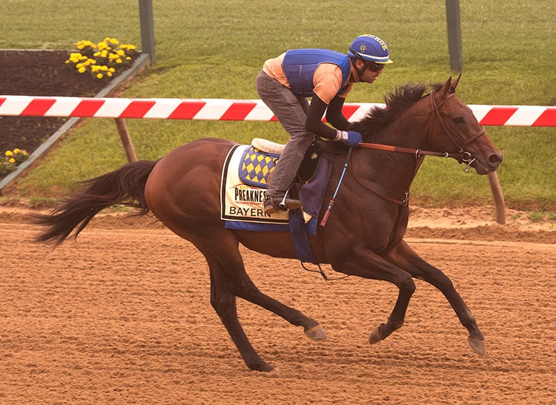 Bayern will arrive for Haskell on Thursday