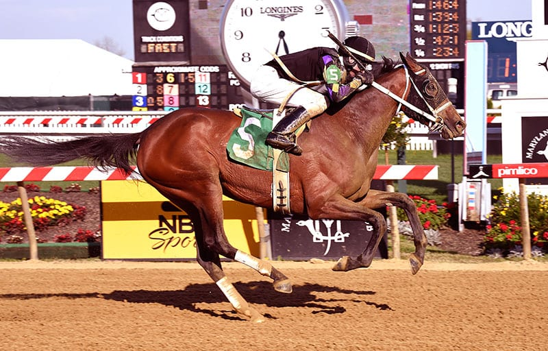 Made Up romps in Pimlico Derby day feature