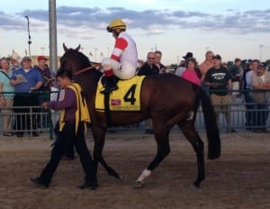A crowd watches as Bobby's Kitten makes his way to the track for the Penn Mile. Photo by The Racing Biz.