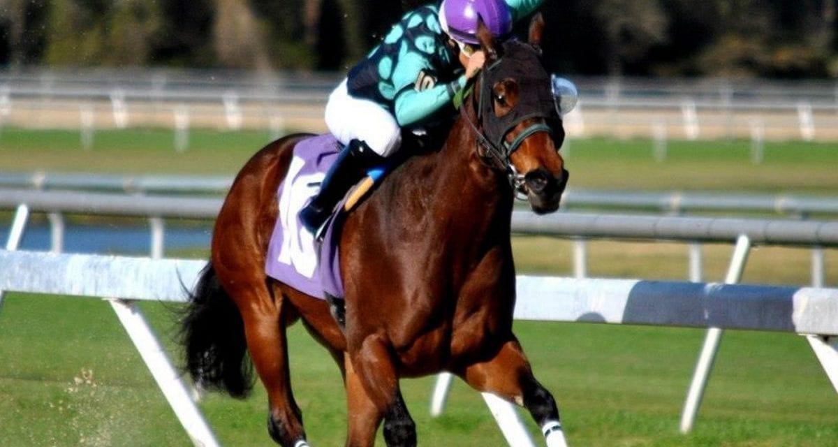Jockey Carol Cedeno strikes a blow for working moms