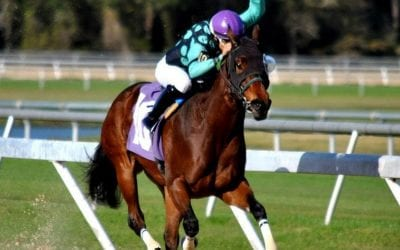 Cedeno hoping for fifth Delaware Park riding title