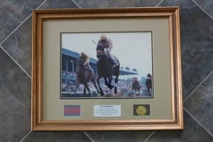 At Poulson's Hare Forest Farm, Go for Gin's Derby triumph has pride of place.  Photo by Nick Hahn.