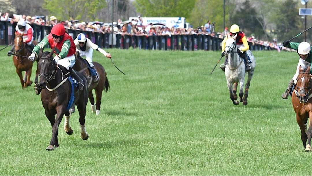 Familiar names to clash in Gold Cup races
