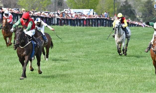 Parimutuel wagering boosts Virginia Gold Cup