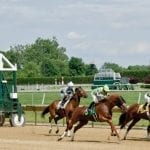 Delaware Park horses to watch: July 27