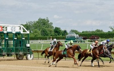 Delaware Park 2019 horses to watch: October 3