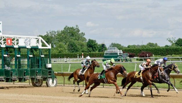 Delaware Park horses to watch: July 24