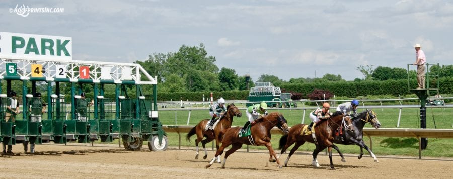 Delaware Park horses to watch: September 16