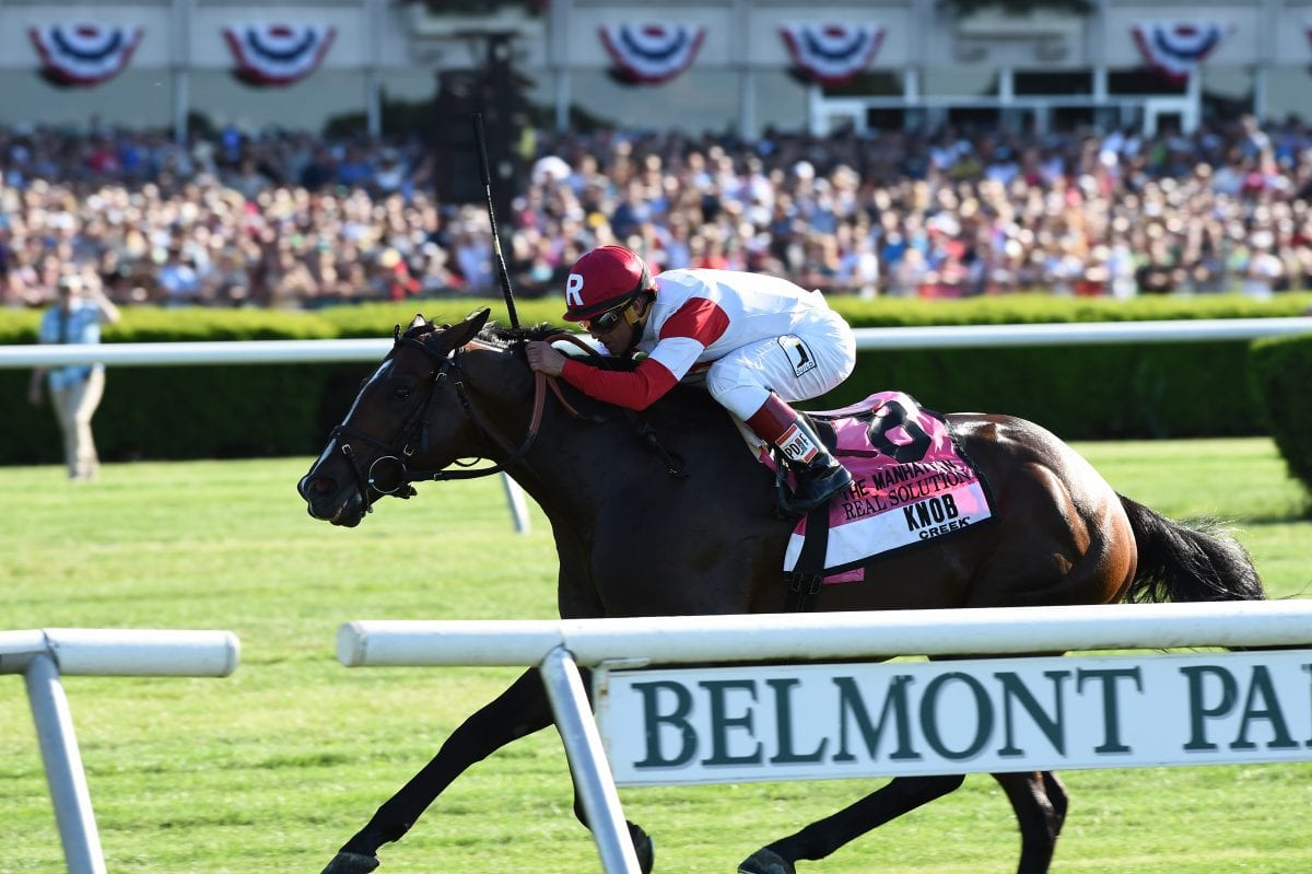 Top Midlantic-bred Poll: Miss Behaviour rising
