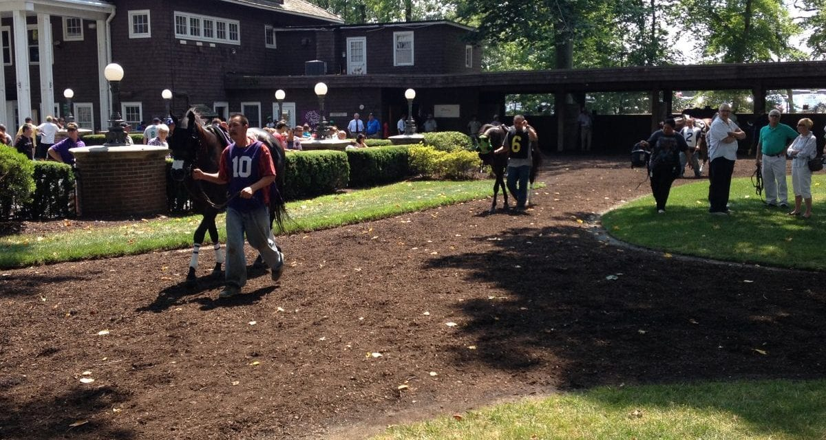 Delaware Park family day to benefit PDJF
