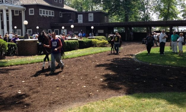 Delaware showcase to find retired racers new homes