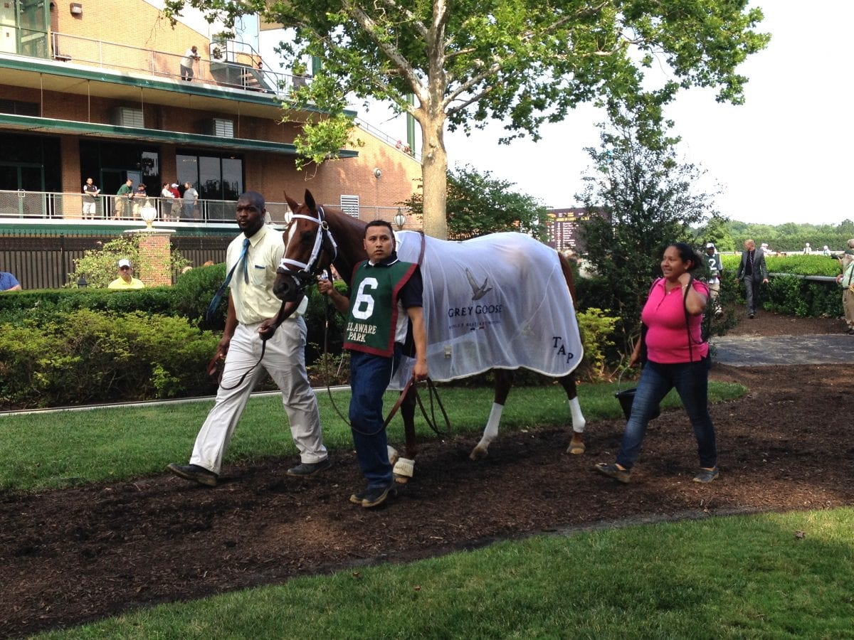 Pletcher overage that wasn't has major implications for racing