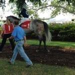 Jockey Cedeno sets single-day Delaware win record
