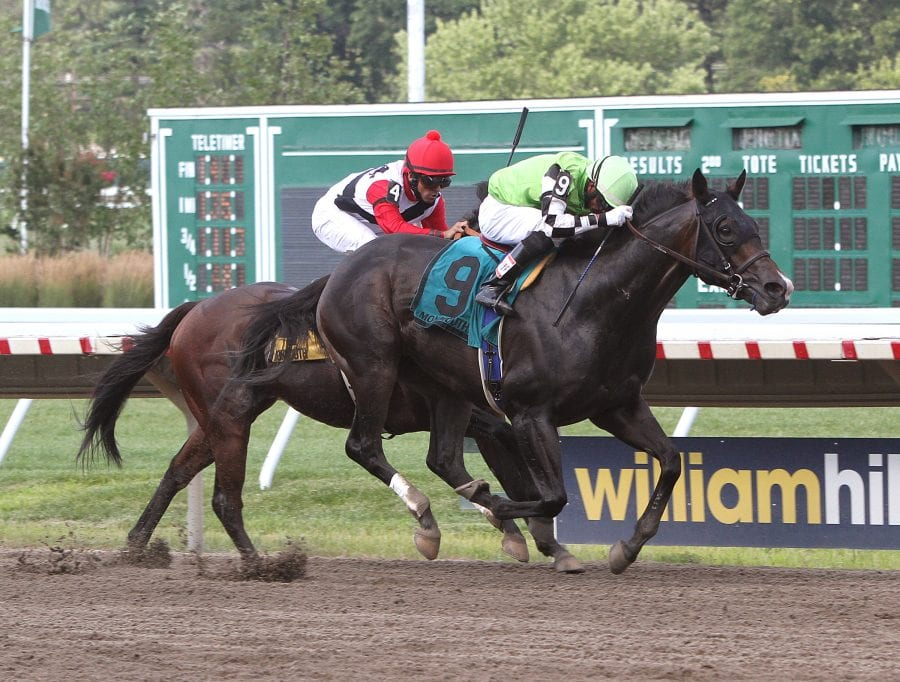 Valid guns for second consecutive stake win