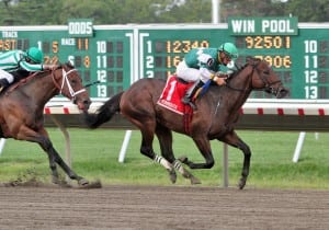 Prudhoe Bay takes the Grade 3 Jersey Shore. Photo By Ryan Denver/EQUI-PHOTO