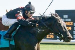 Alex Cintron wins aboard Avilord. Photo by www.HoofprintsInc.com