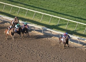 Bayern leads them home in the Pennsylvania Derby.  Photo By  Mark Wyville/ EQUI-PHOTO