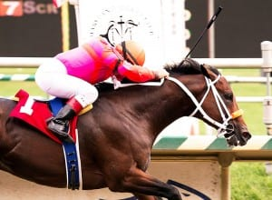 Bern Identity blazes to victory in the Dave's Friend. Photo by Jim McCue, Maryland Jockey Club.