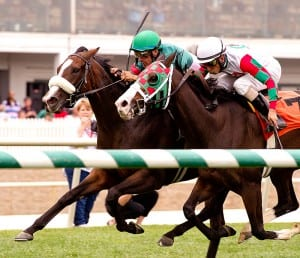 Madame Giry is favored to defend her Jameela title on Saturday. Photo by Jim McCue, Maryland Jockey Club.