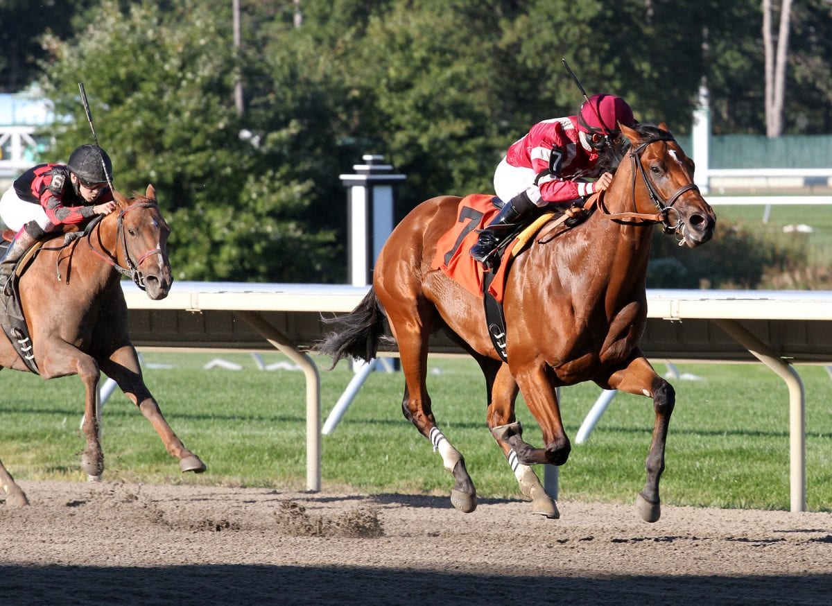 RaceBrief for September 29: Weekend stakes gallery