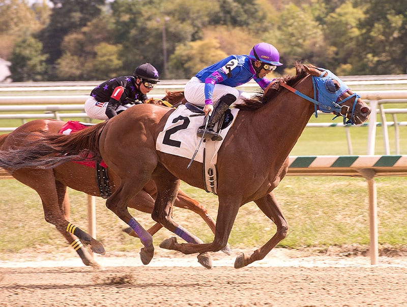 Bettors' delight: Longshots rule at Laurel Park