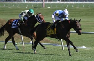 Miss Bullistic rolls home in the Selima. Photo by Laurie Asseo.