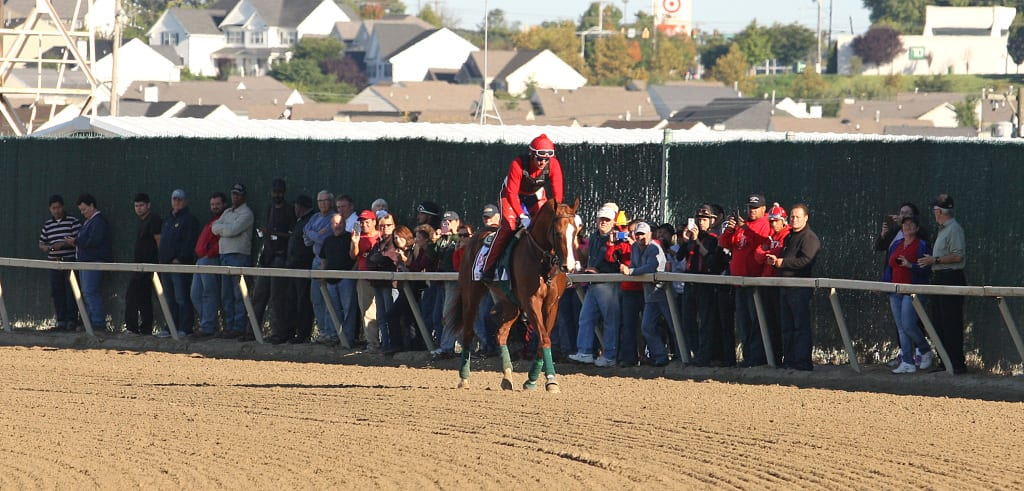 Lined up to see California Chrome at Parx. Photo By Bill Denver/EQUI-PHOTO.