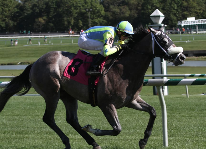 Cyclogenisis impresses in Laurel Futurity romp