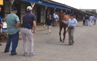 Optimism the order of the day on eve of Fasig-Tipton yearling sale