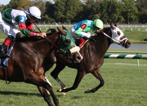 Madame Giry, outside, just holds off Monster Sleeping to win the Jameela. Photo by Laurie Asseo.