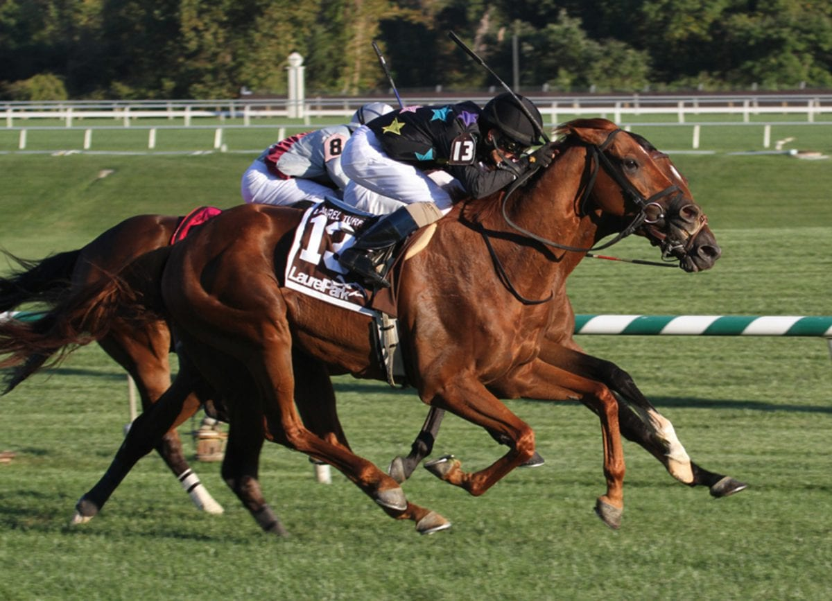 Laurel stakes wins boost two small barns