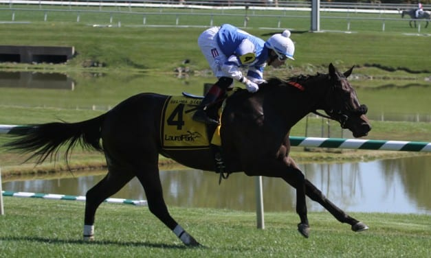Selima Stakes odds and analysis