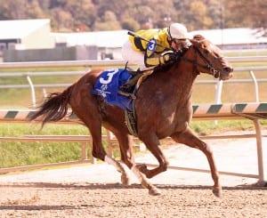 Classy Coco takes the Maryland Million Distaff. Photo by Jim McCue, Maryland Jockey Club.