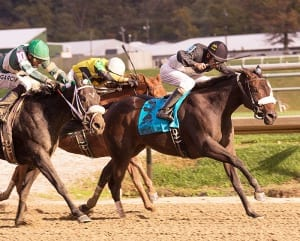 My Magician (Street Magician-My Rib, by Partner's Hero) wins the Maryland Million Lassie. T: Michael Trombetta. O: R. Larry Johnson and RDM Racing Stable. B: Dr. and Mrs. Tom Bowman, Brooke Bowman, R. Larry Johnson. Photo by Jim McCue, Maryland Jockey Club.