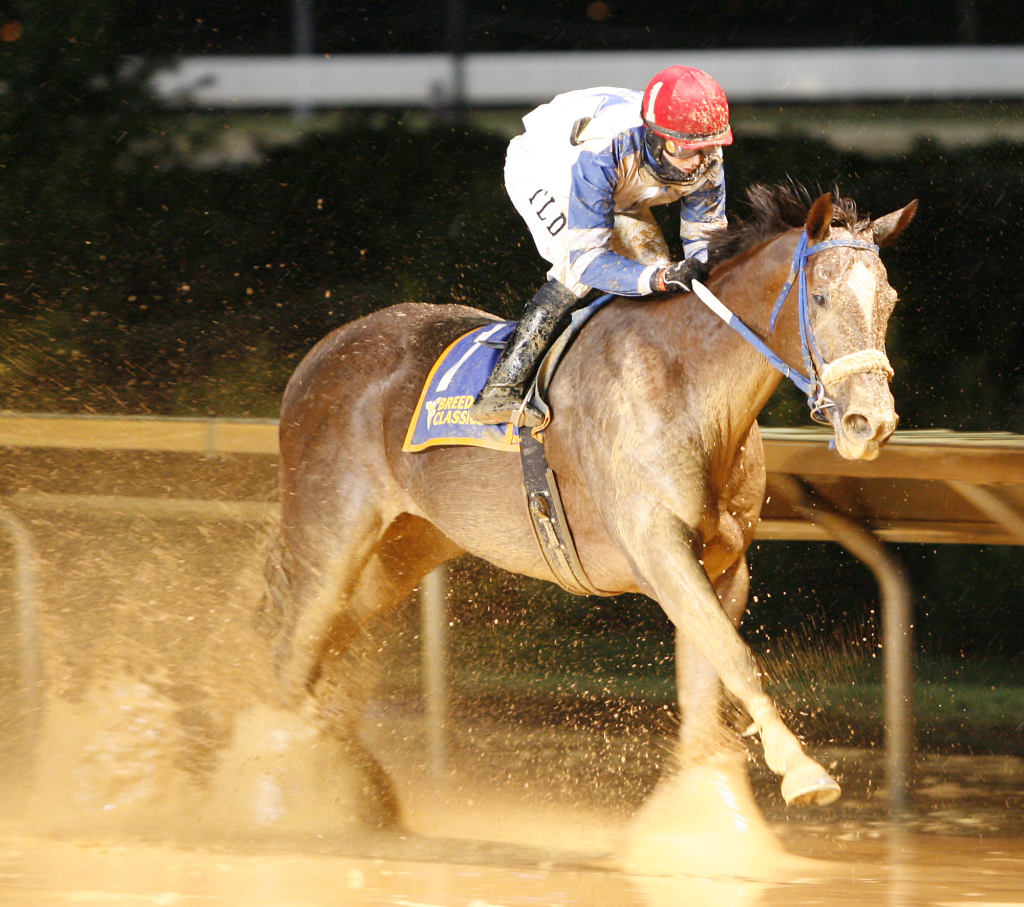Russell Road wins the 2009 West Virginia Breeders Classic -- the first of his two victories in the event. Photo by Jeff Brammer.