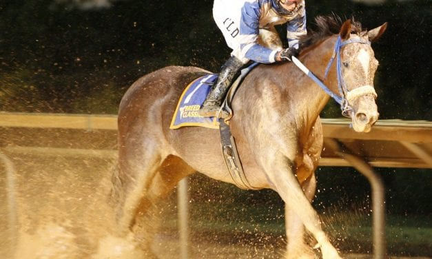 Russell Road one of 3 prior winners aimed at WV Breeders Classic