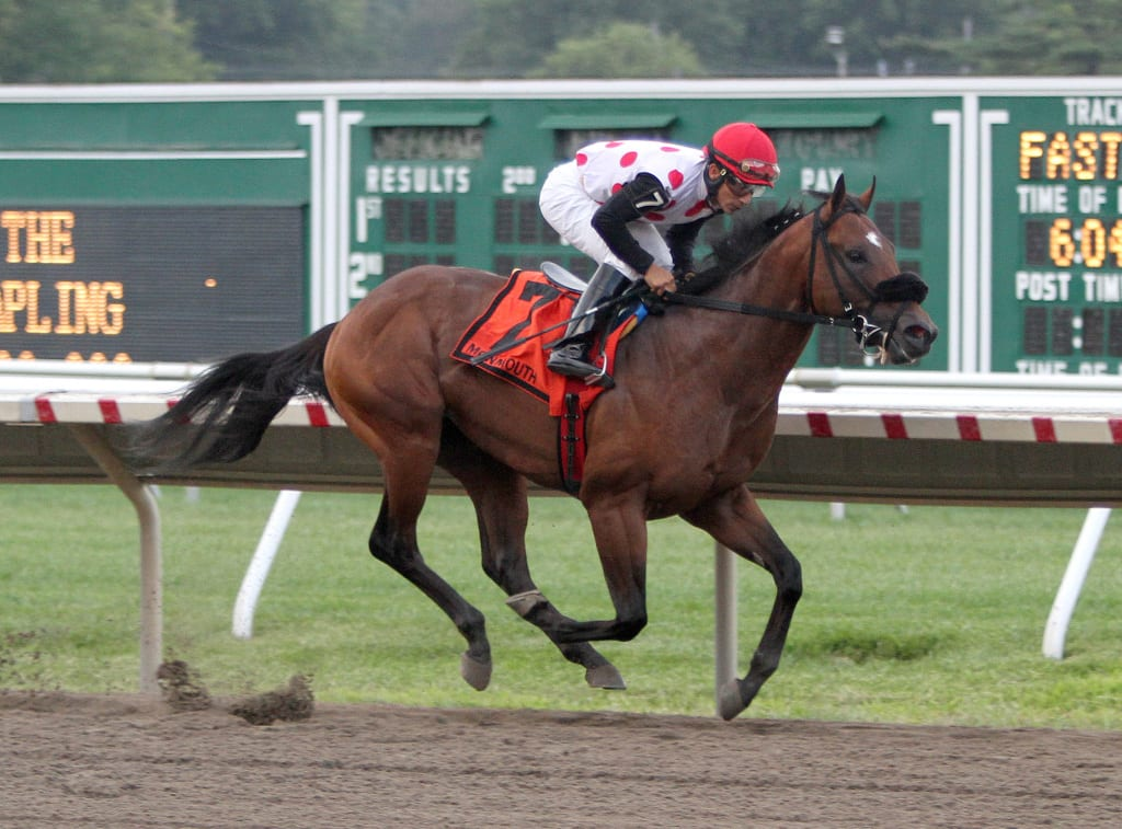 Souper Colossal in the Sapling. Photo By Ryan Denver/EQUI-PHOTO